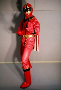 Power Ranger Samuri Costume