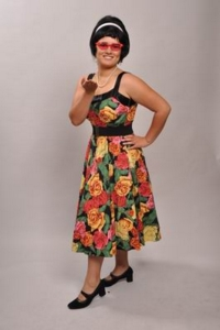 1950s day dress Costume
