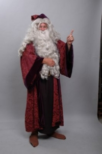 Dumbledore (Harry Potter)