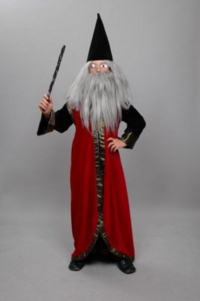 Wizard Child Costume